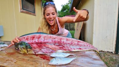 Photo of How To Fillet a Mahi Mahi & See What I Found in the Belly!