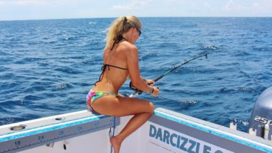 Photo of Darcizzle VS Monster Bullshark