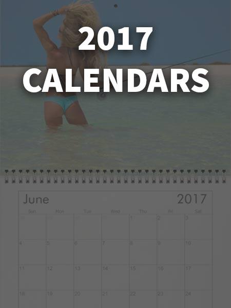 2017 Darcizzle Calendars