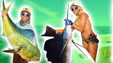 Photo of GIANT Sailfish & Mahi Mahi! Epic MULTI SPECIES Fishing Day!