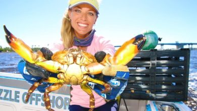 Photo of I CAUGHT CRABS! Crabbing in Florida!