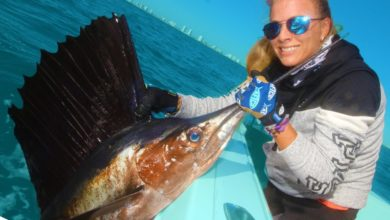 Photo of Angry Sailfish ATTACKS While Deep Sea Fishing!
