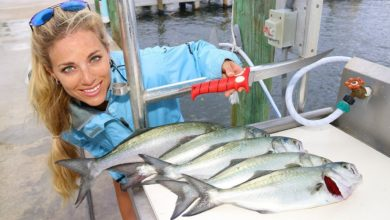 Photo of Florida Inshore Fishing CATCH, CLEAN & COOK Bluefish!