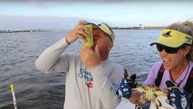 Photo of CAN CRUSHING Force of a Stone CRAB CLAW! Crabbing in Florida!