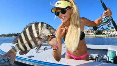 Photo of NEW SPECIES Inshore Fishing! Sheepshead fishing with Shrimp!