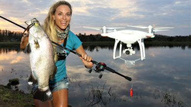 Photo of Girl DRONE FISHING for BARRAMUNDI! ( It Works! )