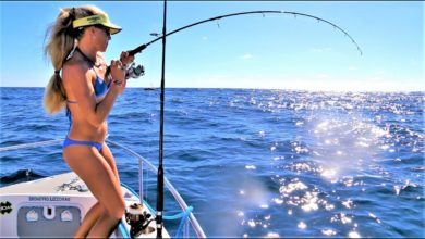 Photo of Deep Sea Fishing for TRIPLETAIL & More!