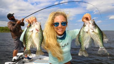 Photo of CRAPPIE Fishing with LIVE MINNOWS on Lake Okeechobee!