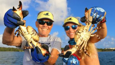 Photo of MY BIGGEST HAUL EVER! Harvesting Stone Crab Claws with Dad!