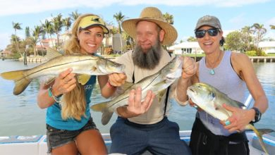 Photo of The MOST SNOOK I've Caught THIS YEAR! ft. Off Grid with Doug & Stacy!