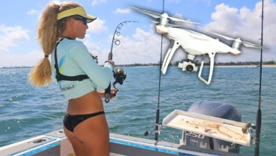 Photo of DRONE Finds SHARKS Near the Beach! Blacktip Shark Migration