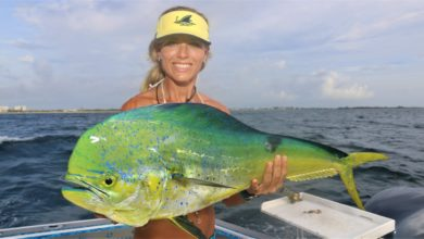Photo of Deep Sea Fishing for Mahi Mahi in Florida with Darcie GoPro Video