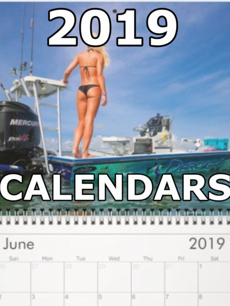 2019 Darcizzle Calendars