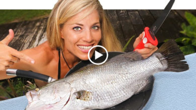 Photo of BARRAMUNDI Catch Clean Cook in Florida