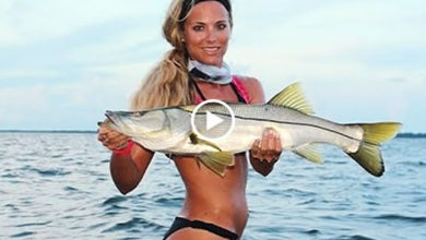 Photo of How to wade fish for big Florida snook