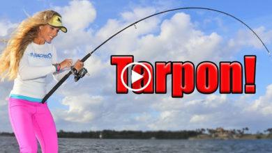 Photo of BIG fish, TINY lure! Florida Inshore Fishing for HUGE Tarpon!