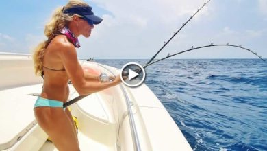 Photo of BIG Mutton & Grouper Wreck Fishing the Florida Keys, Day 3 Video
