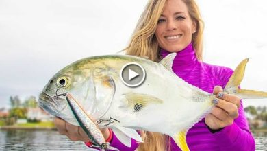 Photo of Florida Inshore Fishing for Jack Crevalles ft. BEST LURES