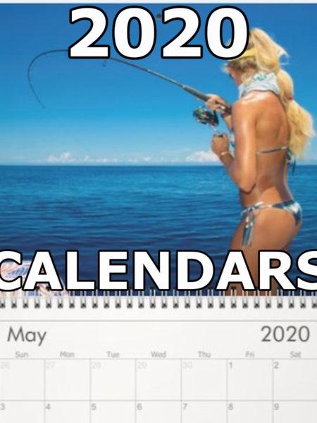 2020 Darcizzle Wall Calendars